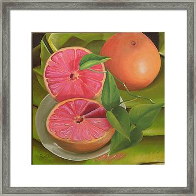 Grapefruit On Fabric Framed Print by Barbara Auito