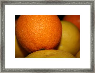 Grapefruit Orange Framed Print by Joshua Sunday
