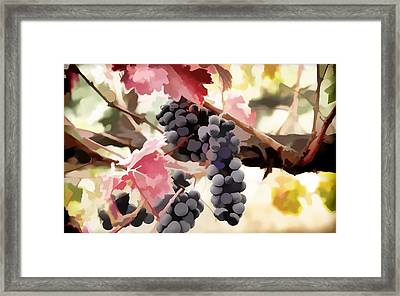 Grapes And Colorful Autumn Leaves Framed Print by Lanjee Chee