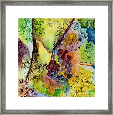 Grapes And Leaves IIi Framed Print
