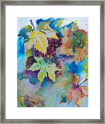 Grapes And Leaves Framed Print by Karen Fleschler