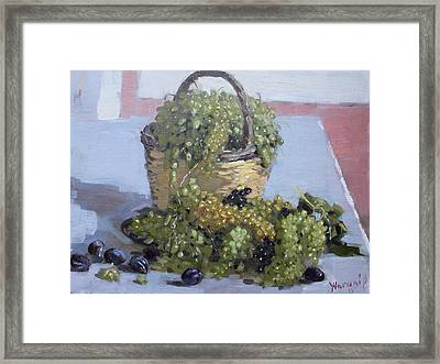 Grapes From Kostas Garden Framed Print by Ylli Haruni