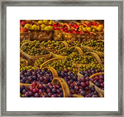 Grapes Galore Framed Print