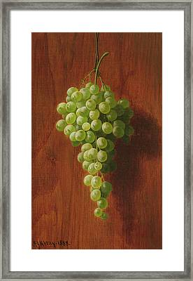 Grapes   Green Framed Print by Andrew John Henry Way