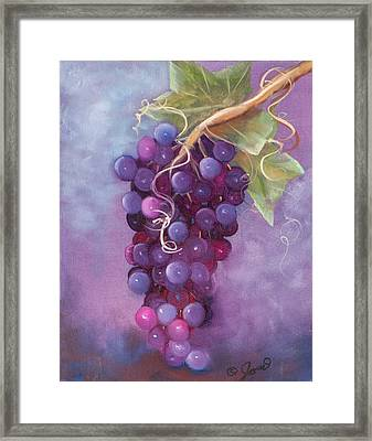 Grapes Framed Print by Joni McPherson