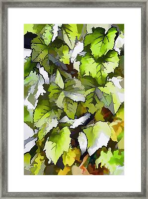 Grapes Leaves In A Vineyard Framed Print by Lanjee Chee