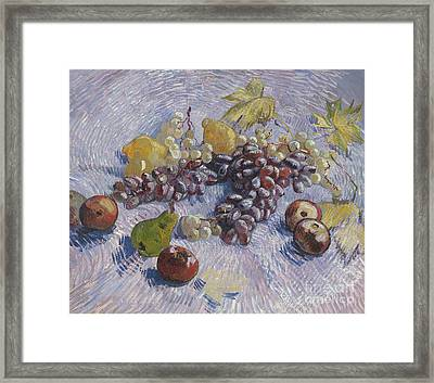 Grapes, Lemons, Pears, And Apples Framed Print by Vincent Van Gogh