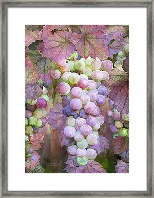 Grapes Of Many Colors Framed Print by Carol Cavalaris