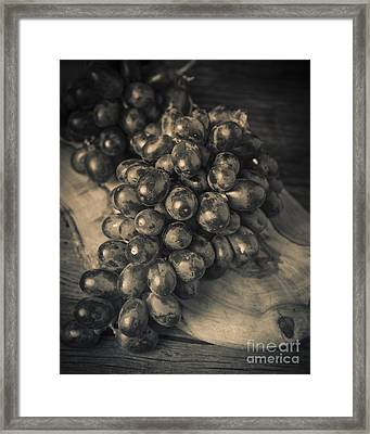 Grapes Still Life With Olive Board Framed Print