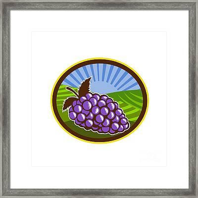 Grapes Vineyard Farm Oval Woodcut Framed Print by Aloysius Patrimonio