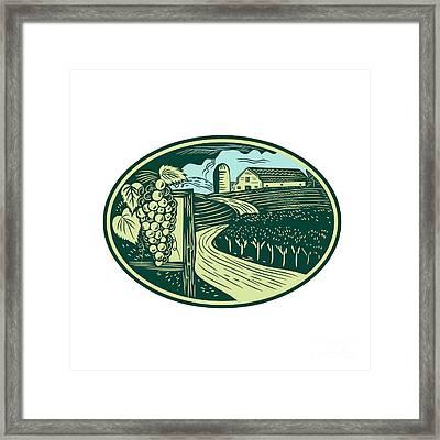 Grapes Vineyard Winery Oval Woodcut Framed Print by Aloysius Patrimonio