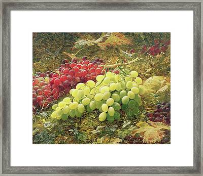 Grapes Framed Print by William Jabez Muckley