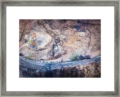 Grapevine Hills No. 7 Framed Print by Al White