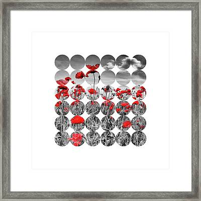 Graphic Art Poppies Framed Print