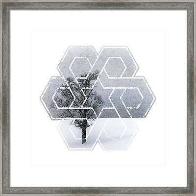Graphic Art Wintertime Lonely Tree  Framed Print by Melanie Viola