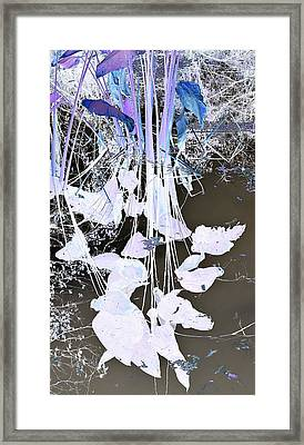 Graphic Reflection Framed Print