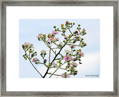 Grasping For The Hands Of Heaven Framed Print