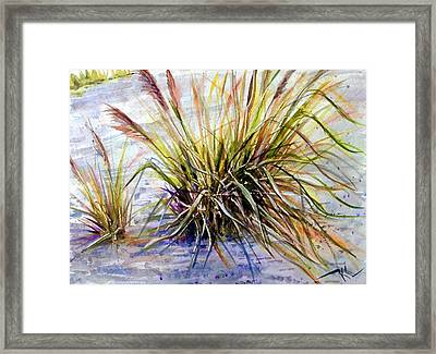 Grass 1 Framed Print