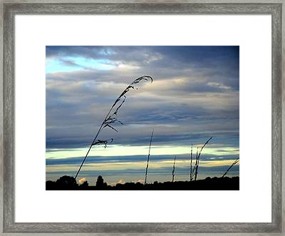 Grass Against Abstract Sky Framed Print