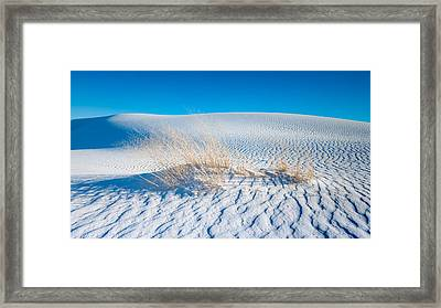 Grass And Dunes Framed Print by Joseph Smith