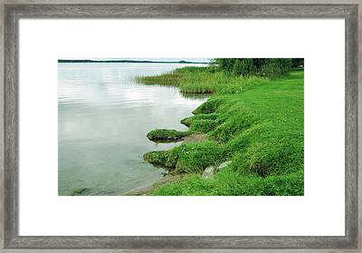 Grass And Water Framed Print