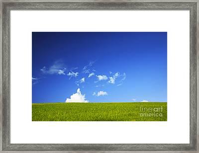 Grass Cloud Sky Framed Print by Brandon Tabiolo - Printscapes