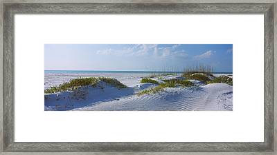 Grass On The Beach, Lido Beach, Lido Framed Print by Panoramic Images