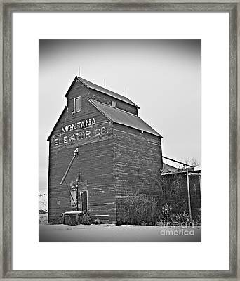 Grass Range Granary Bw Framed Print