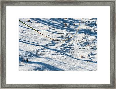 Grass Scapes In The Sand Framed Print