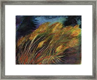 Grasses Framed Print by Diana Ludwig