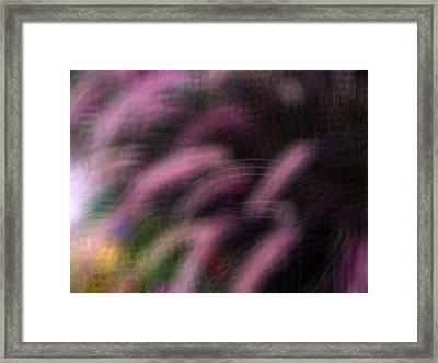 Grasses Framed Print by Eileen Shahbazian