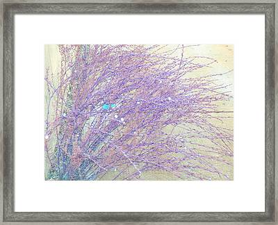 Framed Print featuring the photograph Grasses Toward The Sun by Lenore Senior