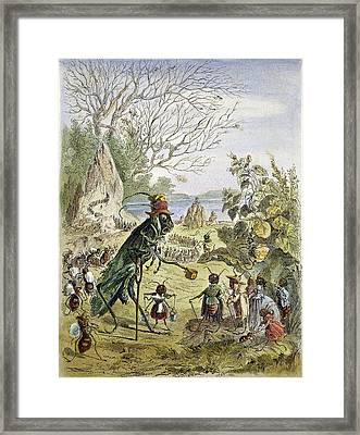 Grasshopper And Ant Framed Print by Granger
