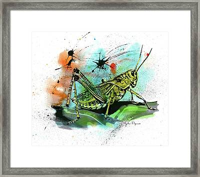 Framed Print featuring the drawing Grasshopper by John Dyess