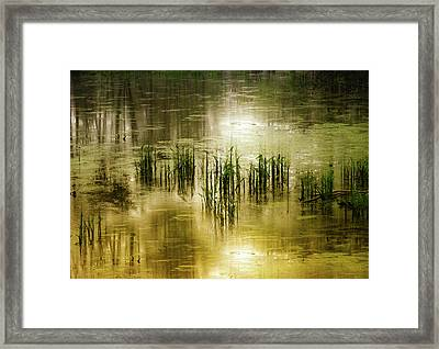 Framed Print featuring the photograph Grassland Abstract by Jessica Jenney