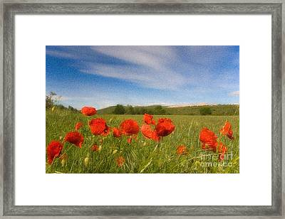 Framed Print featuring the photograph Grassland And Red Poppy Flowers by Jean Bernard Roussilhe