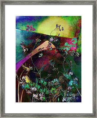 Grassland Series No. 6 Framed Print by Vinson Krehbiel