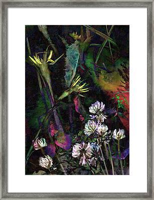 Grasslands Series No. 7 Framed Print by Vinson Krehbiel