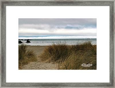 Grassy Beach Framed Print