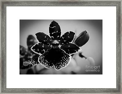 Grateful Framed Print by Sharon Mau