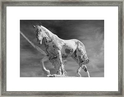 Well Weathered Framed Print
