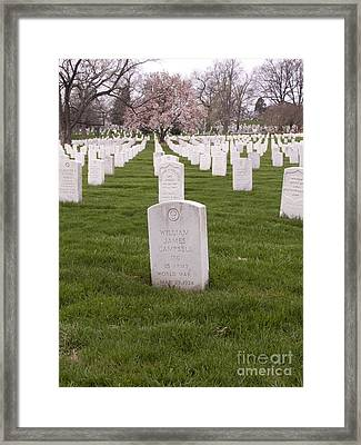 Grave Markers In Arlington National Cemetery Framed Print by Tim Grams