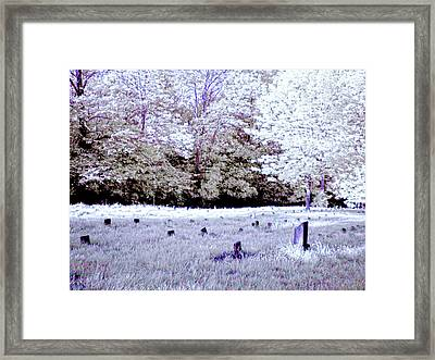 Graveyard At The Ridges In Athens Framed Print by Bob LaForce