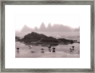 Gray Day Framed Print
