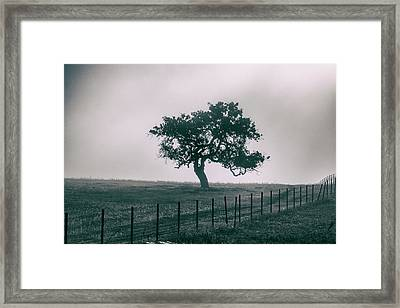 Gray Sky Morning Framed Print