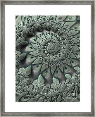 Gray Spiral Framed Print by John Edwards