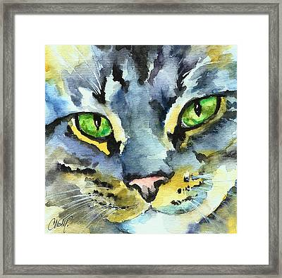 Gray Tabby Striped Cat Framed Print