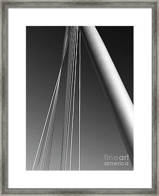 Gray Framed Print by Tapio Koivula