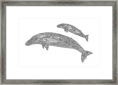 Gray Whale And Calf Framed Print by Carol Lynne