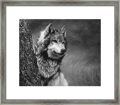 Gray Wolf - Black And White Framed Print by Lucie Bilodeau